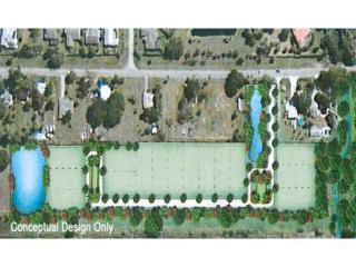 20920 Sandy Ln, Estero, FL 33928 (MLS #216064607) :: The New Home Spot, Inc.