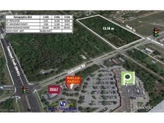 8991 Corkscrew Rd, Estero, FL 33928 (MLS #216064611) :: The New Home Spot, Inc.