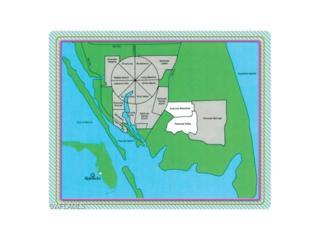 27 Blue Hen Dr, Placida, FL 33946 (MLS #216065446) :: The New Home Spot, Inc.