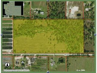 1965 Platt  Road, Naples, FL 34120 (MLS #216065729) :: The New Home Spot, Inc.