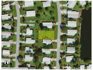 59 Twin Palms Dr, Naples, FL 34114 (MLS #216072146) :: The New Home Spot, Inc.