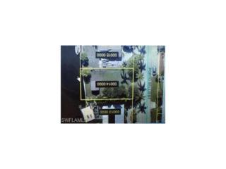 16214 Porto Bello St, Bokeelia, FL 33922 (MLS #216073460) :: The New Home Spot, Inc.