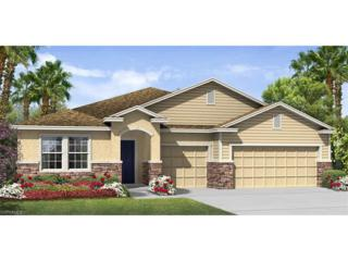 3055 Sunset Pointe Cir, Cape Coral, FL 33914 (MLS #216074703) :: The New Home Spot, Inc.