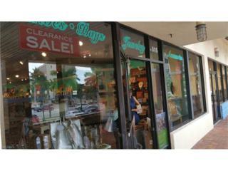 S Collier Blvd, Marco Island, FL 34145 (MLS #216075573) :: The New Home Spot, Inc.
