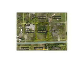 139 Lucille Ave, Fort Myers, FL 33905 (MLS #216076199) :: The New Home Spot, Inc.