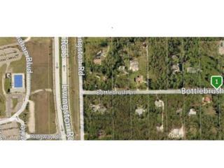 6911 Bottlebrush Ln, Naples, FL 34109 (MLS #216076463) :: The New Home Spot, Inc.