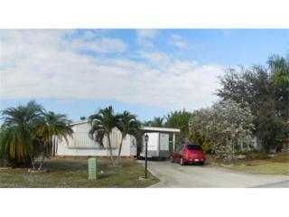 116 Audubon Rd, Naples, FL 34114 (MLS #216077882) :: The New Home Spot, Inc.