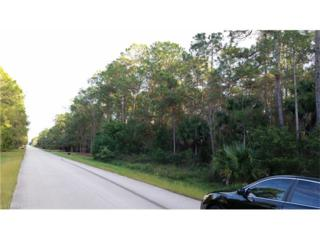 4290 5th Ave NW, Naples, FL 34119 (MLS #216078906) :: The New Home Spot, Inc.