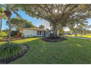 4805 Hawaii Blvd, Naples, FL 34112 (MLS #216080319) :: The New Home Spot, Inc.