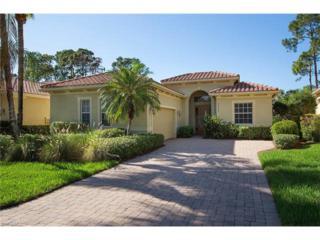 28663 Pienza Ct, Bonita Springs, FL 34135 (MLS #216080735) :: The New Home Spot, Inc.