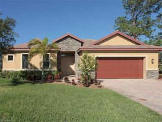 11591 Pin Oak Dr, Bonita Springs, FL 34135 (MLS #217000656) :: The New Home Spot, Inc.