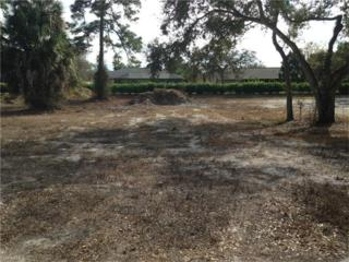 11580 Pin Oak Dr, Bonita Springs, FL 34135 (MLS #217000768) :: The New Home Spot, Inc.