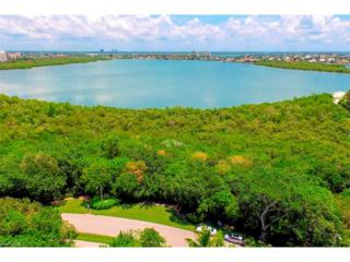 945 Royal Marco Way, Marco Island, FL 34145 (MLS #217001298) :: The New Home Spot, Inc.