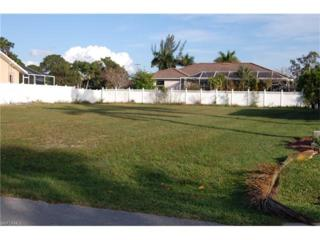 1343 Freeport Ave, Marco Island, FL 34145 (MLS #217001561) :: The New Home Spot, Inc.