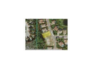 3791 Treasure Cove Cir, Naples, FL 34114 (MLS #217002047) :: The New Home Spot, Inc.