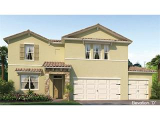 3031 Sunset Pointe Cir, Cape Coral, FL 33914 (MLS #217002086) :: The New Home Spot, Inc.