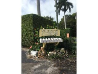 1360 Chesapeake Ave, Naples, FL 34102 (MLS #217002719) :: The New Home Spot, Inc.