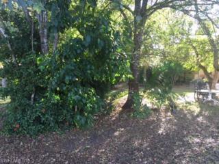 10150 Carolina St, Bonita Springs, FL 34135 (MLS #217003160) :: The New Home Spot, Inc.