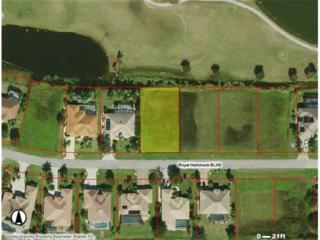 18420 Royal Hammock Blvd, Naples, FL 34114 (MLS #217003306) :: The New Home Spot, Inc.
