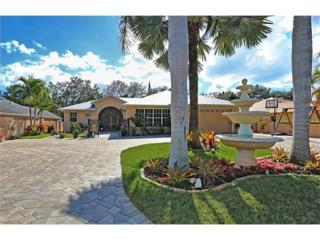 48 Wickliffe Dr, Naples, FL 34110 (MLS #217003672) :: The New Home Spot, Inc.