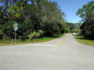 3377 Seagrape Ave, Naples, FL 34104 (MLS #217003887) :: The New Home Spot, Inc.