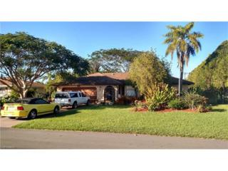 1833 SE 2nd Ter, Cape Coral, FL 33990 (MLS #217003971) :: The New Home Spot, Inc.