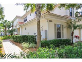12867 Carrington Cir 1-101, Naples, FL 34105 (#217004114) :: Homes and Land Brokers, Inc