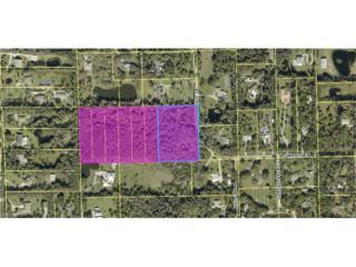15790 Glendale Ln, Fort Myers, FL 33912 (MLS #217004750) :: The New Home Spot, Inc.