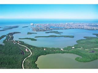 1071 Blue Hill Creek Dr, Marco Island, FL 34145 (MLS #217005768) :: The New Home Spot, Inc.