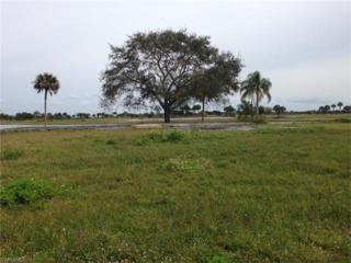 18006 Royal Tree Pky, Naples, FL 34114 (MLS #217006804) :: The New Home Spot, Inc.