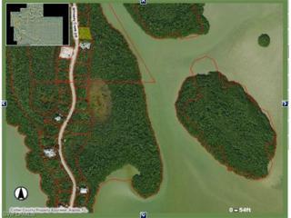 780 Whiskey Creek Dr, Marco Island, FL 34145 (MLS #217006860) :: The New Home Spot, Inc.