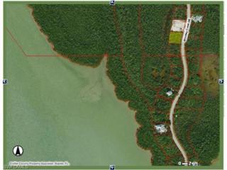 797 Whiskey Creek Dr, Marco Island, FL 34145 (MLS #217006869) :: The New Home Spot, Inc.
