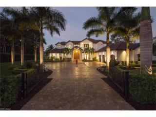 171 Carica Rd, Naples, FL 34108 (MLS #217007086) :: The New Home Spot, Inc.