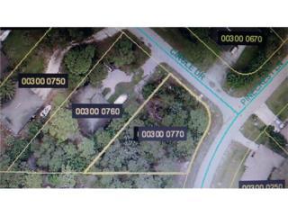 12050 Circle Dr, Bonita Springs, FL 34135 (MLS #217008194) :: The New Home Spot, Inc.