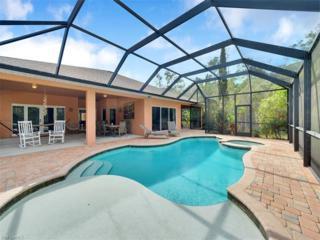 10711 Strike Ln, Bonita Springs, FL 34135 (MLS #217008230) :: The New Home Spot, Inc.