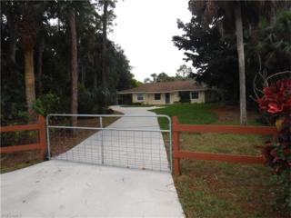 4482 Burton Rd, Naples, FL 34104 (MLS #217008239) :: The New Home Spot, Inc.