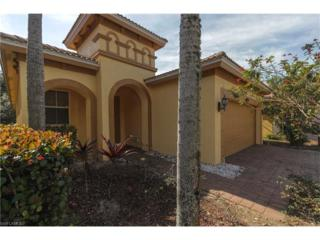 10209 Silver Palm South Dr, Estero, FL 33928 (MLS #217008897) :: The New Home Spot, Inc.