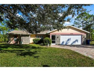 25581 Paradise Rd, Bonita Springs, FL 34135 (MLS #217009482) :: The New Home Spot, Inc.