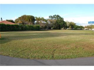 125 Delbrook Way, Marco Island, FL 34145 (MLS #217010296) :: The New Home Spot, Inc.