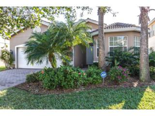 11141 Sparkleberry Dr, Fort Myers, FL 33913 (MLS #217010434) :: The New Home Spot, Inc.