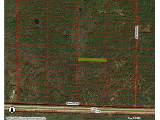 Blackburn Rd, Naples, FL 34117 (MLS #217014672) :: The New Home Spot, Inc.
