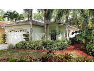 6071 Shallows Way, Naples, FL 34109 (MLS #217014775) :: The New Home Spot, Inc.