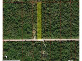 32  AVE  SE Ave, Naples, FL 34117 (MLS #217015461) :: The New Home Spot, Inc.