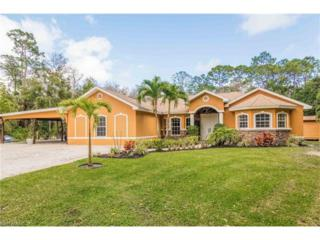 196 6th St, Naples, FL 34113 (MLS #217015545) :: The New Home Spot, Inc.