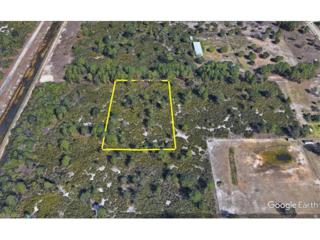 7897 4th Ter, Labelle, FL 33935 (MLS #217016237) :: The New Home Spot, Inc.