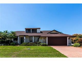 266 Polynesia Ct, Marco Island, FL 34145 (MLS #217016450) :: The New Home Spot, Inc.