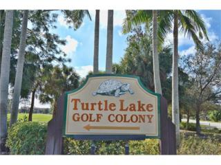 170 Turtle Lake Ct #209, Naples, FL 34105 (MLS #217016747) :: The New Home Spot, Inc.