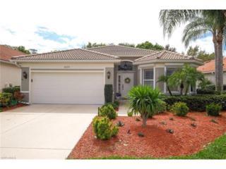 20351 Rookery Dr S, Estero, FL 33928 (MLS #217016772) :: The New Home Spot, Inc.