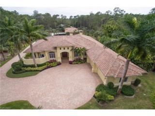 5140 Tamarind Ridge Dr, Naples, FL 34119 (MLS #217017156) :: The New Home Spot, Inc.