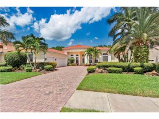 19452 La Serena Dr, Estero, FL 33967 (MLS #217017422) :: The New Home Spot, Inc.